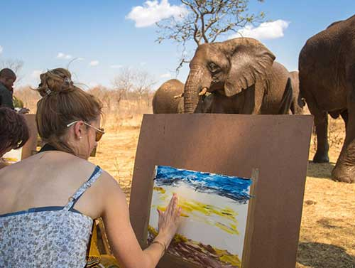 Elephant Art Safari
