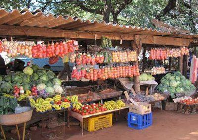 market-township-tour