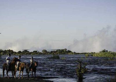 zambia-horses-river