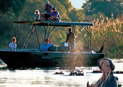Zambezi River Safari