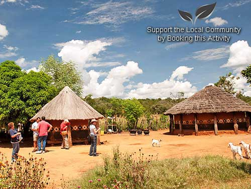 Mukuni Village Tour - Zambia