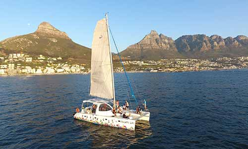 Waterfront Adventures in Cape Town