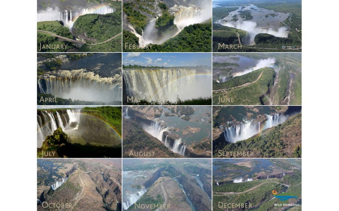 View of Victoria Falls throughout the year.