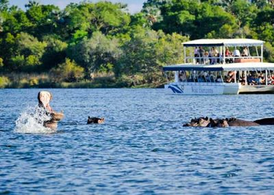 Zambezi sunset cruise in Victoria Falls