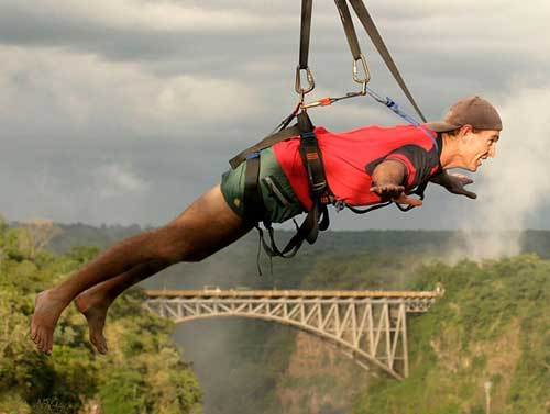slider-flying-fox