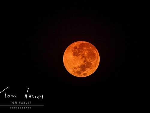 Full Moon image by Tom Varley