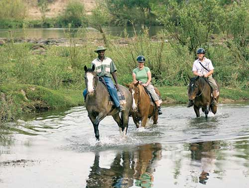 wild-horizons-horse-riding