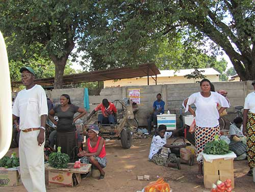 Visit local Markets in Chinotimba