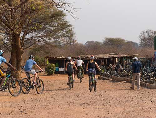 victoria-falls-bike-tour-market