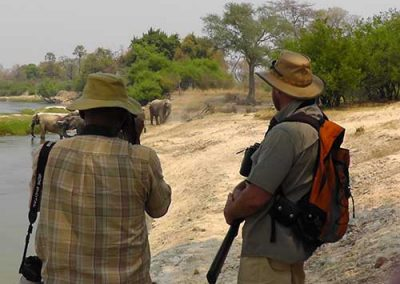 Wild Horizons Walking Safari
