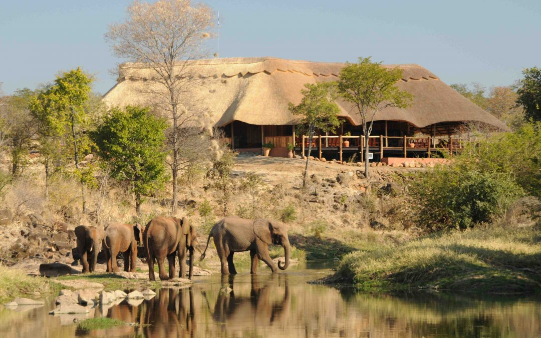 Introducing The Wallow Lodge